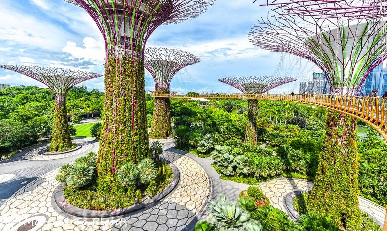 Eco Friendly City Features at Tengah EC